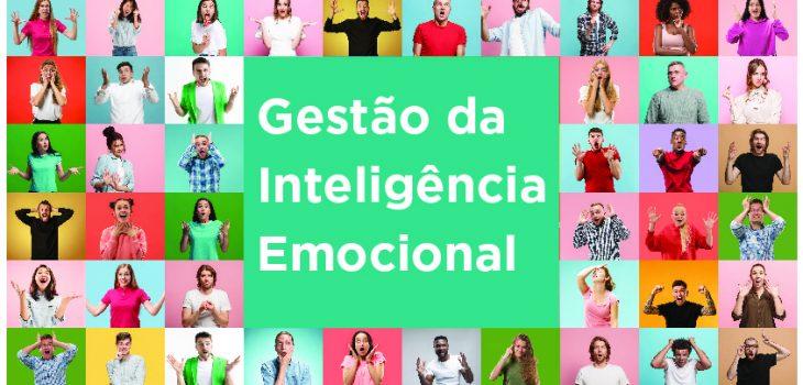 Gestão da Inteligência Emocional